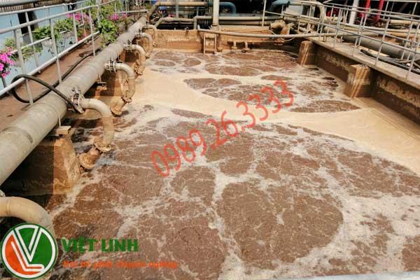 Hút bùn vi sinh tại hà nội