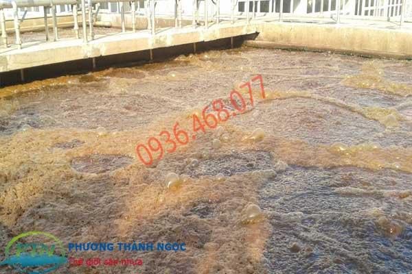 Hút bùn vi sinh tại Nam Định