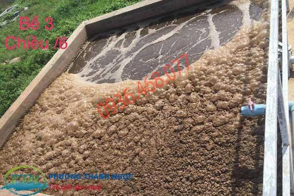 Hút bùn vi sinh tại Ninh Bình