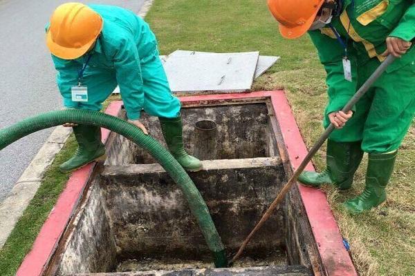 Việt  Linh sở hữu đội ngũ nhân viên giàu kinh nghiệm, chăm chỉ