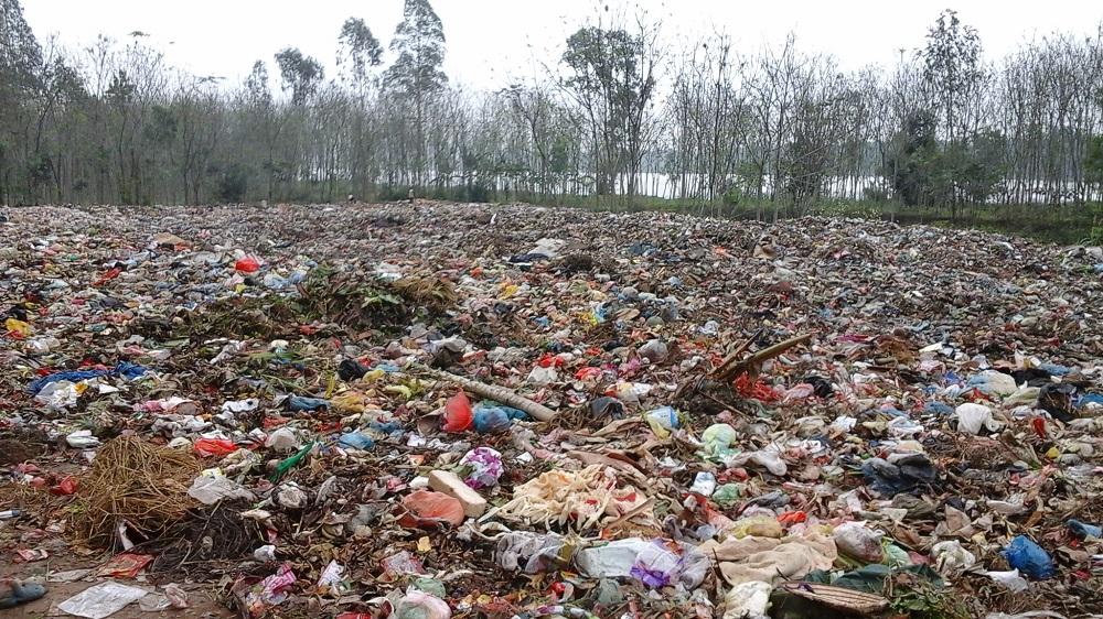 hậu quả  ô nhiễm môi trường đất