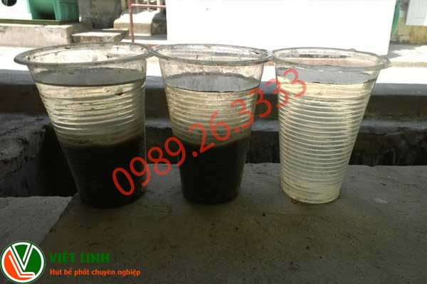 vai trò của bùn vi sinh